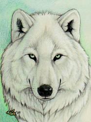 Keekers Badge by Goldenwolf