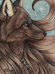 Aguara Badge by Goldenwolf