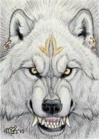 Werewolf Smile ACEO by Goldenwolf