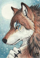 Andrew - ACEO by Goldenwolf