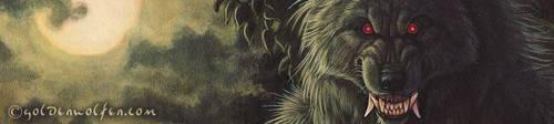 The Wolf's Bride - Teaser by Goldenwolf
