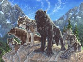 Interloper by Goldenwolf