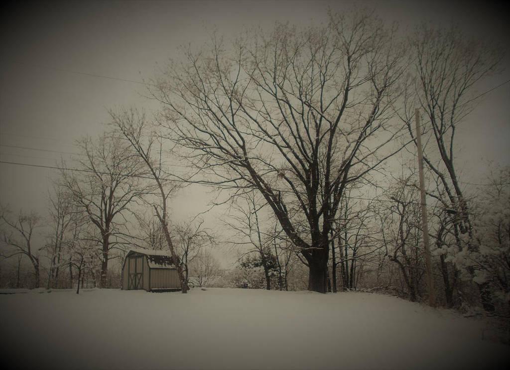Snowy Morning pt. 2 by JOHNNYFB