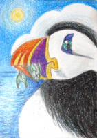 Puffin with Fish -- ACEO by tuftedpuffin