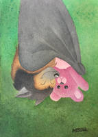 Boyd the Bat and his Pink Teddy by tuftedpuffin