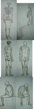 Anatomy class by GaluSs