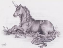unicorn by EleEstel