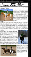 Above The Bit: Bareback Riding by Decorum100