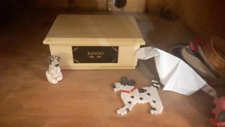 Ringo's Shrine by Bordercollie15