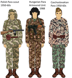 Warsaw Pact Early Camos by camorus----234