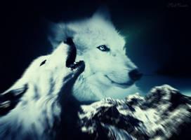 Wolves by SadSonata