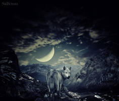 The Last Amazing Grays... by SadSonata