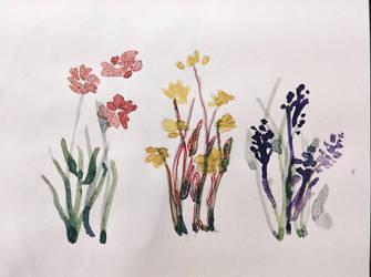 [halamanan] damuhan blooms by jeantralala