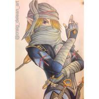 Shiek:hyrule warriors by Mimibert
