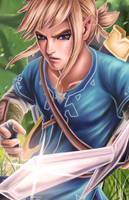 Breath Of The Wild Link (updated) by Mimibert