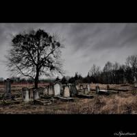 Jewish Cemetery Koronowo 17 by cinnabarr