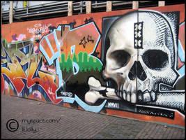 Skull Graffiti by stallardl