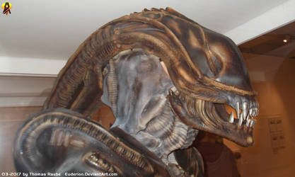 SciFi Exhibition - Xenomorph Head by Euderion