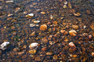 Water by quintmckown