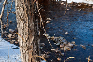 Water, Stone, Wood by quintmckown