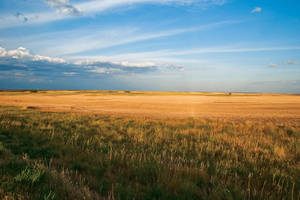 Evening on the Prairie by quintmckown