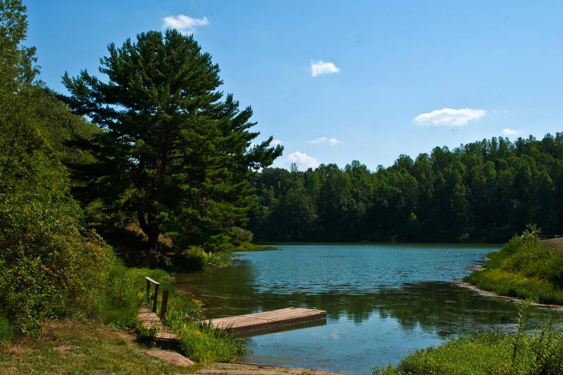 Conaway Run Lake WMA by quintmckown