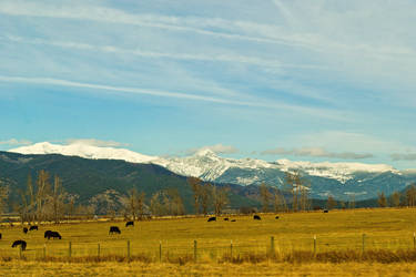 The Mission Mountains from Arlee by quintmckown