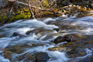 Graves Creek Above the Falls by quintmckown