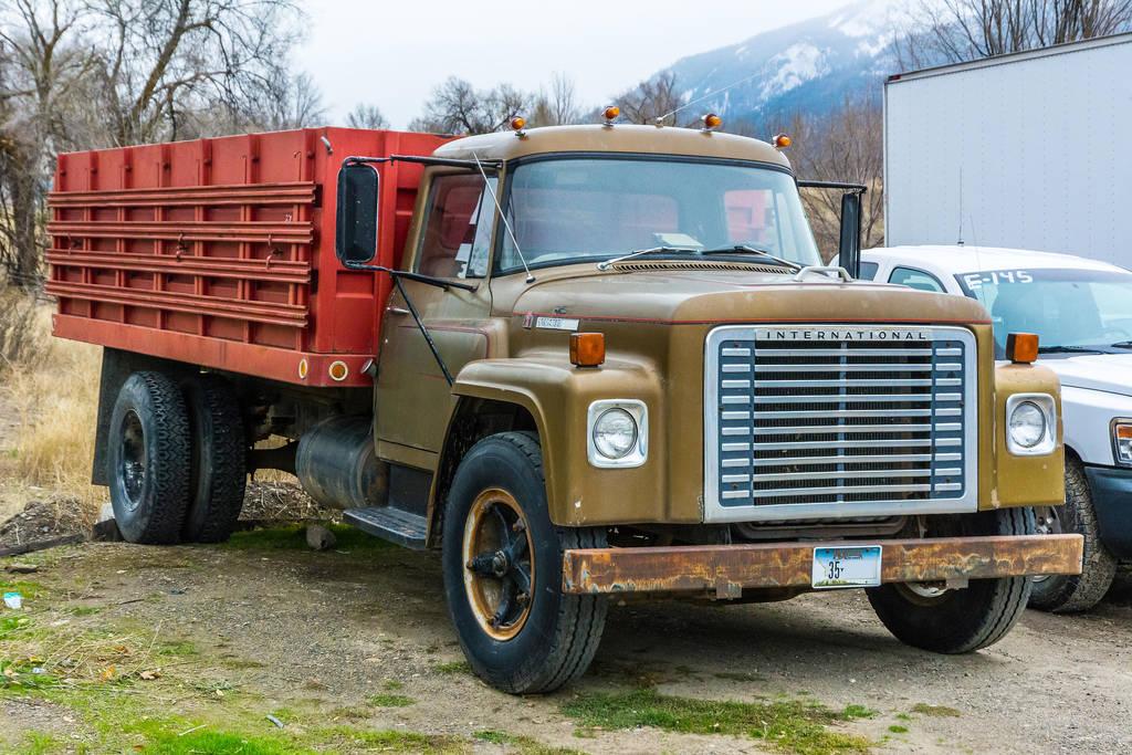 197? International Loadstar 1600 by quintmckown