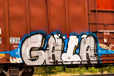 Graffiti on the tracks  (Detail) by quintmckown