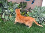 Doing a Little Gardening by superpower-pnut