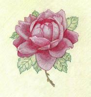 Raikan's Rose by sweetmarly