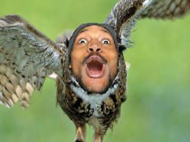 CoryxKenshin as an Owl by SethTheArtist
