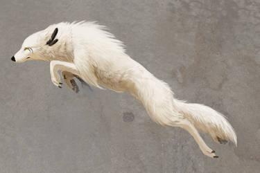 Tadhras Leap by KechK