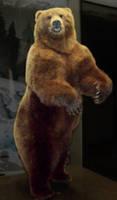 Grizzly Bear by Rhabwar-Troll-stock