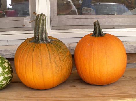 Pumpkins 3 by Rhabwar-Troll-stock