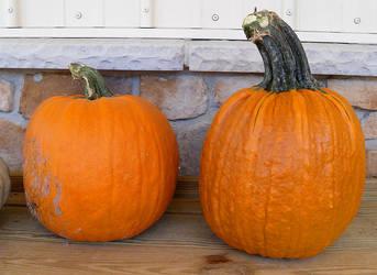Pumpkins 4 by Rhabwar-Troll-stock