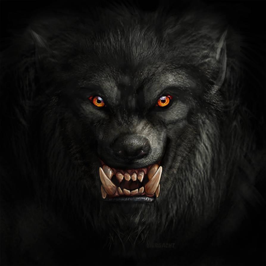 Werewolf stock by Rhabwar-Troll-stock