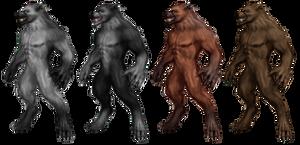 Werewolf Stock 2 by Rhabwar-Troll-stock