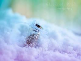 Winter in a Bottle by xOronar
