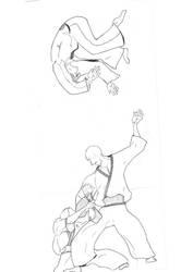 aikido master by Majeed-Q8