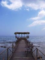 Pier by emreekinci