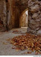 Falling Leaves by emreekinci