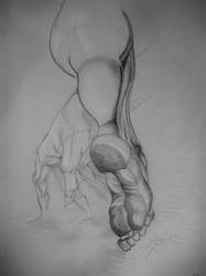 drawing -Anatomi foot and hand by TatharielCreations