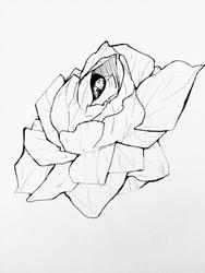 Inktober Day 26: Gardenia by MzWaffle