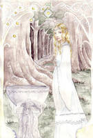Galadriel's mirror by lilie-morhiril