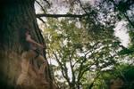 Rise of the Tomb Raider : Desert Tank top 01 by Laragwen