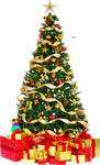 Xmas tree png 3 HQ large by iamszissz