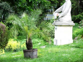 Botanical Garden by Dory4