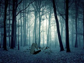 Woods by windlle